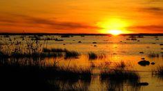 Liminganlahti, Gulf of Bothnia. Northern Ostrobothnia - Pohjois-Pohjanmaa - Norra Österbotten