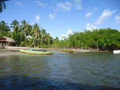 Rio Sinibu em Camurubi, Baia da Traição-PB.