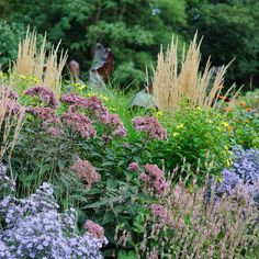Bountiful autumn border planted up with eupatoriums asters persicaria calamagrostis and helianthus