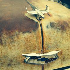 1954 Bel Air Chevy