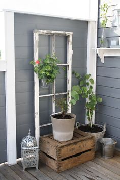 Little Brags: Decorating With Old Windows - All For Garden Antique Windows, Vintage Windows, Decor With Old Windows, Wood Windows, Amazing Gardens, Beautiful Gardens, Old Window Frames, Window Ideas, Garden Windows
