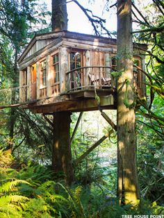 7 Cool Tree House Hotels - MainStreet http://www.treehousepoint.com... Designed and built by Pete Nelson Tree House Point in Washington State
