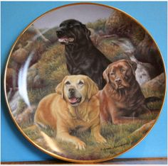 Beloved Companions Labrador Plate by Franklin Mint Painted by Nigel Hemmings on eBid United Kingdom £15.00 or make an offer