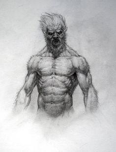Pencil Art Drawings, Cool Drawings, Art Sketches, Werewolf Art, Creature Drawings, Anatomy Drawing, Creature Concept, Monster Art, Fantastic Art