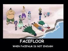 Image result for Fairy Tail Jokes When Face Palm isn't enough Images