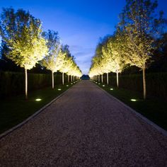uplighting along pathway