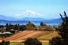 Humpday Photo of the Week! Our neighbours to the south are never far away. Views of beautiful Mount Baker in Washington State can be enjoyed throughout the Greater Victoria area–share our view with your friends!