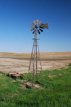 North Dakota farm field