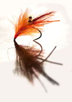 Bright shrimp - The Sam-I-Am is a brightly orange shrimp fly Fly Tying Vises, Saltwater Flies, Fly Tying Patterns, My Favorite Image, Trout, Fly Fishing, Shrimp, Woodworking, Bright