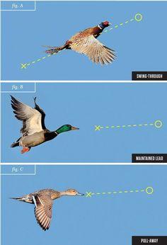 shotgun techniques, wingshooting, duck hunting, shooting ducks, leads, skeet shooting #pheasanthunting #waterfowlhuntingtips