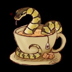 30 best ball python art images snakes ball python python regius