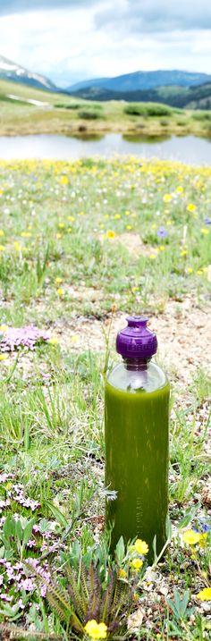 The perfect companion for a hike in the mountains, my Matcha Fitness Bottle #Steep&Go #OntheGo #MatchaFitness