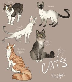 Catsss by 1skylight1.deviantart.com on @deviantART ✤ || CHARACTER DESIGN REFERENCES | キャラクターデザイン | • Find more at https://www.facebook.com/CharacterDesignReferences & http://www.pinterest.com/characterdesigh and learn how to draw: concept art, bandes dessinées, dessin animé, çizgi film #animation #banda #desenhada #toons #manga #BD #historieta #strip #settei #fumetti #anime #cartoni #animati #comics #cartoon from the art of Disney, Pixar, Studio Ghibli and more || ✤