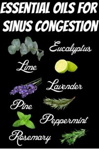Aromatherapy Essential Oils for Sinus Congestion