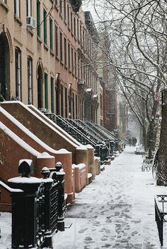 Brooklyn in winter / photo by Nicole Franzen