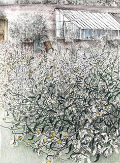 """""""Summer's End"""" - Pamela Grace - My work is based on drawing - realised in pen and ink wash, etchings and solar-plate etchings.  Sketches and larger colour drawings are often made on location and then developed in the studio, emboldening elements and using other techniques and processes to explore their potential."""