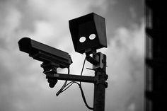 Funny security camera