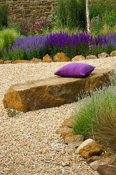 Purple and stone in the garden <3