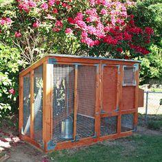 DIY: Bloomin' Chicken Coop