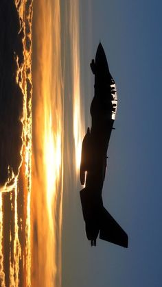 Hornet. Nice shot over the Sunset