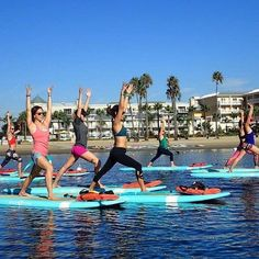 """WEBSTA @ discoverla - Los Angeles has perhaps the highest number of yoga practitioners per capita outside of India, and the city proudly offers enough variations on the ancient philosophy to appeal to just about any demographic. For those searching for a truly unique experience, @yogaqua - """"where the ocean is your mat"""" - leads group classes in Marina del Rey every weekend and offers private instruction by appointment. No worries if you've never been on a paddleboard. Link in bio for more…"""