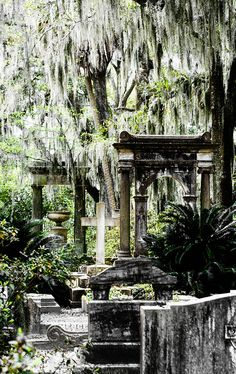 Do you like ghost tours, or the paranormal? Then make sure a visit to the Bonaventure Cemetery in on your Savannah, GA itinerary! Recoleta Cemetery, Bonaventure Cemetery, Savannah Georgia, Savannah Chat, Georgia Usa, Monuments, Oh The Places You'll Go, Places To Visit, Old Cemeteries