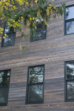 reSAWN's shou sugi ban charred wood in Park Slope Brooklyn