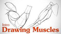 Drawing Muscles: What You Need to Know by Stan Prokopenko* How To Draw Abs, How To Draw Muscles, Drawing Muscles, Learn To Draw, Drawing Lessons, Life Drawing, Figure Drawing, Drawing Tips, Drawing School