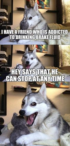 Bad Pun Dog | I HAVE A FRIEND WHO IS ADDICTED TO DRINKING BRAKE FLUID HEY SAYS THAT HE CAN STOP AT ANY TIME | image tagged in memes,bad pun dog | made w/ Imgflip meme maker