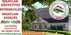 Immobilien west-Ungarn ! Landhaus Ungarn Hungary, Landing Pages, Real Estates, Environment, Farmhouse