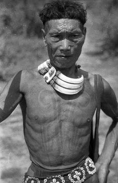 India | Phom Naga,/Ao Naga man with body tattoos erroneously called 'peacock feathers', which represent mithun ears, worn by a head hunter.  Chantongia, Yacham, Nagaland, Mokokchung District.  1936. | ©SOAS, Nicholas Haimendorf