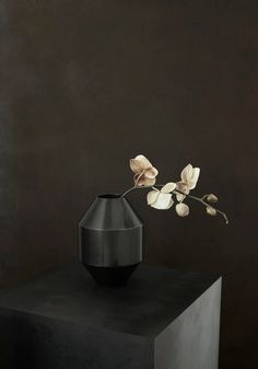 Hydro Vase is a part of our new collection - Complements. Complements is a new collection of designs that join our main collection of furniture. A line of collectibles rooted in our passion for materiality comprised of functional pieces with aesthetic qualities that are equally appealing as decorative elements. #fredericiafurniture #complements #hydrovase #sofieøsterby #modernoriginals #craftedtolast #interiordesign #danishdesign #scandinaviandesign Space Copenhagen, Leather Box, Danish Design, Timeless Design, Scandinavian Design, Home Accessories, Branding Design, House Design, Vase