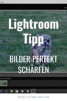 Bilder perfekt schärfen in Lightroom glieder sich in 3 Phasen: Grundschärfung, lokale/kreative Schärfung und Schärfen beim Export. Lightroom, Art, Image Editing, Tips, Photo Illustration, Art Background, Kunst, Performing Arts