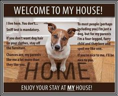 Dogs Rules Funny dog rules family pet four legged family love sniff my house cute