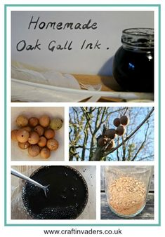 Oak Gall Ink (also known as Iron Gall Ink) is made from the crushed up galls found on Oak trees. This tutorial shows you how we made it using galls we found on a walk, a nail and some vinegar. How To Make Ink, Zealand Tattoo, Natural Dye Fabric, Homemade Paint, Arts And Crafts, Paper Crafts, Kid Crafts, Craft Projects, Earth Pigments