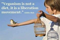 """""""Veganism is not a diet, it is a liberation movement."""" ~Eddie Mah"""