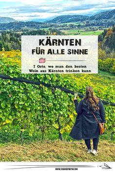Wein aus Kärnten: 7 Orte in Mittelkärnten, wo man Kärntner Wein genießen kann Sauvignon Blanc, Pinot Noir, Klopeiner See, Movies, Movie Posters, Travel, Ski Trips, Viajes, Films