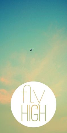 fly high.  #design #quotes #typography