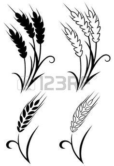 Wheat and rye photo