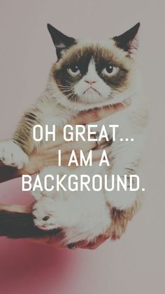 Grumpy Cat Great I Am A Background iPhone 6 Wallpaper