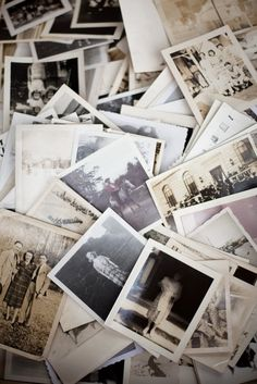 Collection of vintage photographs.