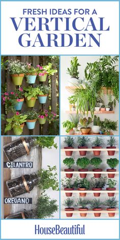 Vertical Gardens: Proof that your plants don't need to be stuck in the ground.