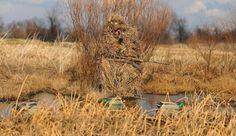 Instant Duck Blind: How to Use a Gillie Suit Where There's No Place to Hide | Field & Stream