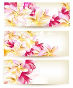 Pink Vector Flower Banners Templates