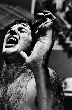 David Naughton as David Kessler in An American Werewolf in London