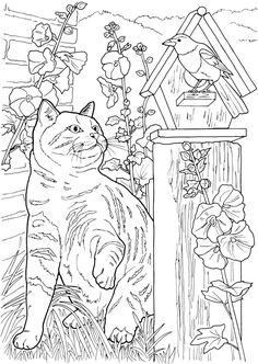 Lovable Cats and Dogs Coloring Pages Detailed Coloring Pages, Free Adult Coloring Pages, Cute Coloring Pages, Animal Coloring Pages, Coloring Pages To Print, Free Coloring, Coloring Sheets, Coloring Books, Catty Noir