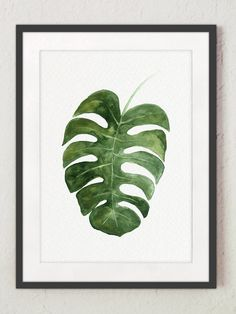 Monstera Deliciosa Plant Art Print, Kitchen Botanical Illustration, Living Room Wall Decor Floral Watercolor Painting Paper Flower Poster