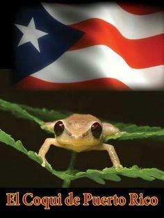 Puerto Rico ♥ ♡ ♥ ♡