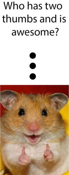 haha - little rodent thumbs