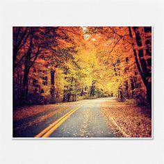 Fall Decor Autumn Landscape Wall Art Photography Road Woods Woodland Gold Red Sepia Yellow Orange Tangerine - 8x10 - Autumn Decor.